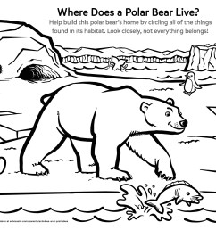 Learn About a Polar Bear's Home   Worksheets \u0026 Printables   Scholastic    Parents [ 2550 x 3300 Pixel ]