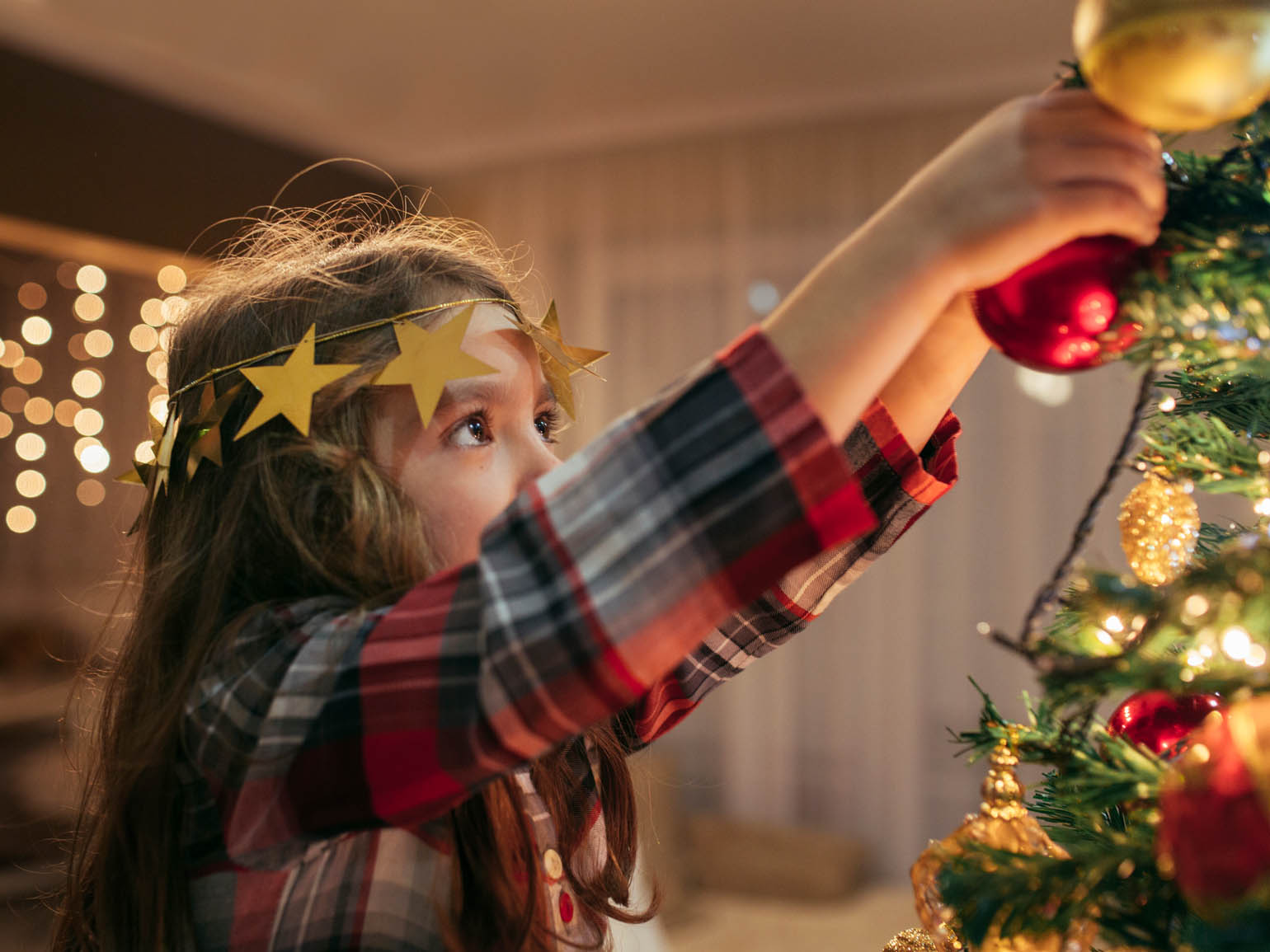 hight resolution of christmas history and traditions a celebrate winter holidays activity