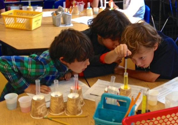 Elementary Science Classroom