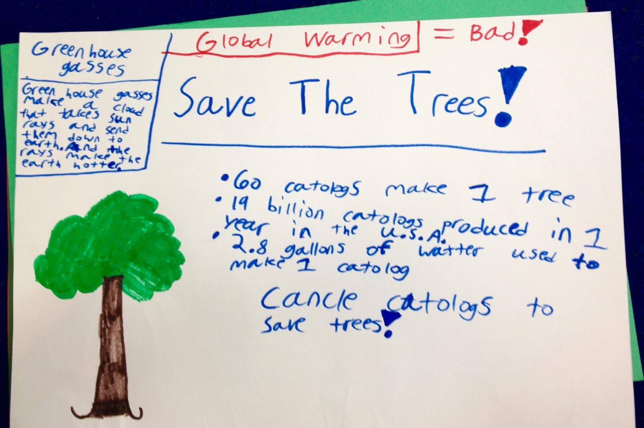 Canceling Catalogs Saving Trees An Easy Earth Day