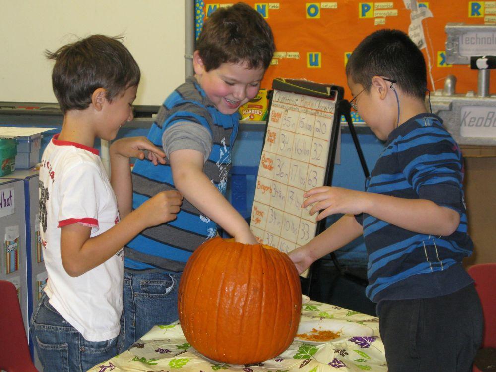 medium resolution of The Pumpkin Project: Math
