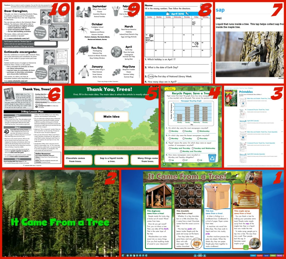 medium resolution of Making the Most of Scholastic News Magazines   Scholastic