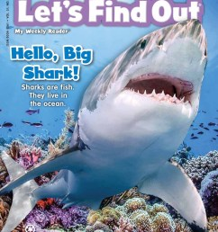 out of all the editions of let s find out this year none had caused such a stir in my class than the hello big shark edition  [ 800 x 1071 Pixel ]