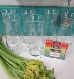 Celery Science: Kids Design Their Own Experiments   Scholastic [ 768 x 1024 Pixel ]