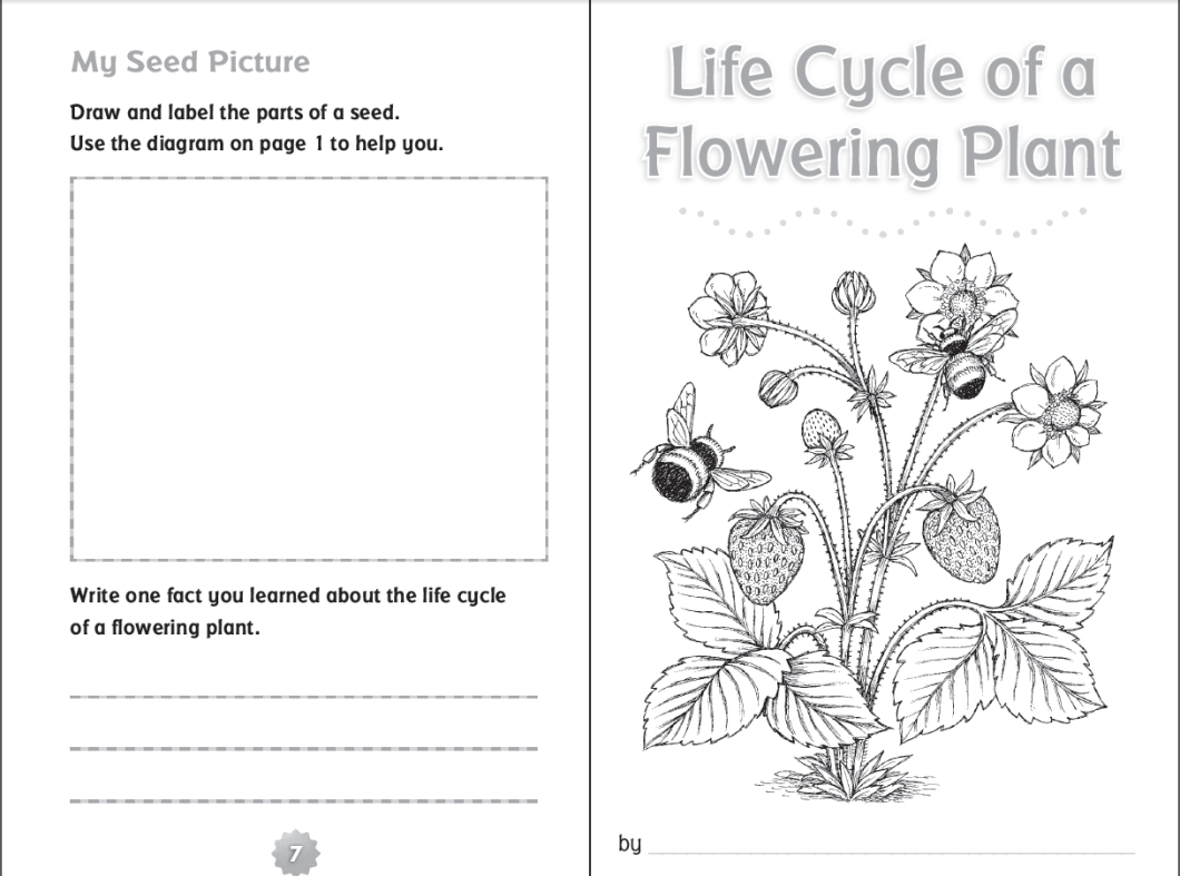 all about me flower worksheet