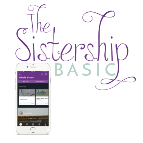 sistership-sq-basic