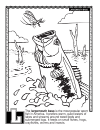 Free Coloring Pages, Coloring Printables, and Coloring