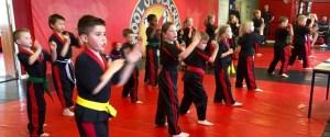 Martial arts Grading Sedgley SOBB