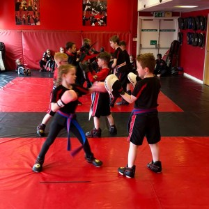 Sedgley and Kingswinford martial arts Gradings were outstanding.