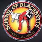 Martial Arts Oldbury - Online Academy