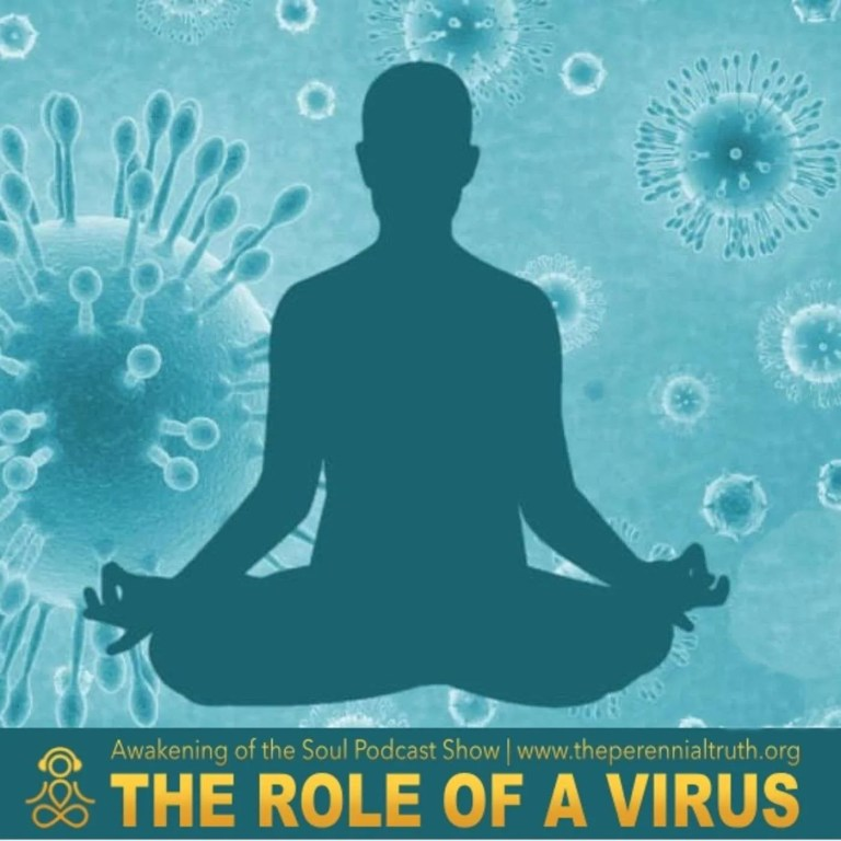 The Role of a Virus for the Awakening of the Soul