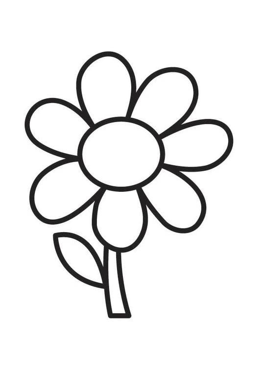 Kleurplaat bloem 305x431