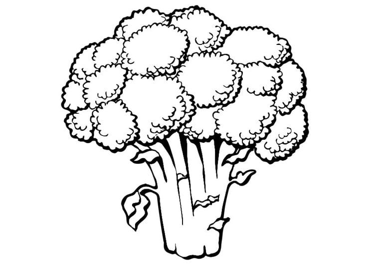 Ausmalbilder Salat