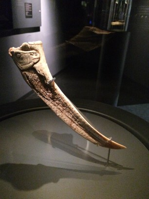 An ibex carved on a horn or tusk
