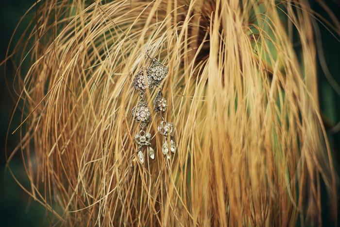 Earrings in plants outside Honeymoon Suite at Schoone Oordt