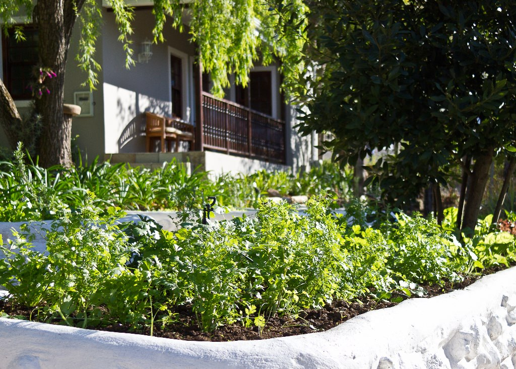 Herbs for the Conservatory, one of the best of Swellendam Restaurants