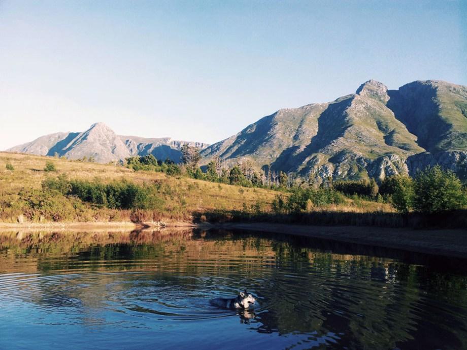 MTB Western Cape