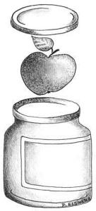 Apfel konserviert Zeichnung von Petra Elsner