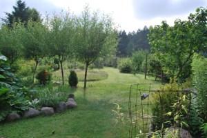 Mein Wiesengarten an einem etwas bedeckten Tage. Foto: pe
