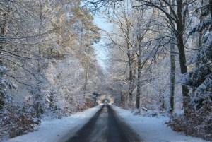 Winterstraße zwischen Kurtschlag und Kappe. Foto: Petra Elsner