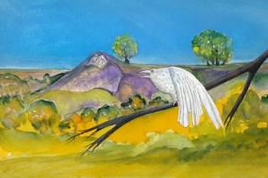 Auf der Anhöhe des Pimpinellenbergs kann man weit ins Niederoderbruch schauen und besondere Heilkräuter entdecken. Zeichnung: Petra Elsner
