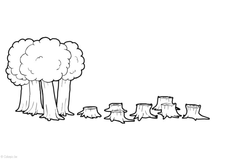 Malvorlage Abholzung Ausmalbild 14411