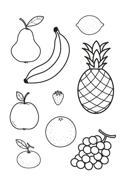 Malvorlage alle Obstsorten - Kostenlose Ausmalbilder Zum