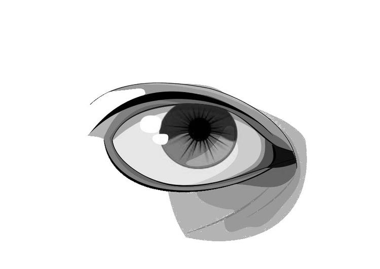 Malvorlage Auge - Kostenlose Ausmalbilder Zum Ausdrucken