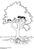 Malvorlage Baum   Ausmalbild 3724.