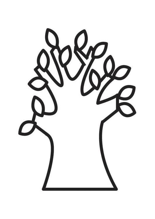 Malvorlage Baum im Frühling - Kostenlose Ausmalbilder Zum