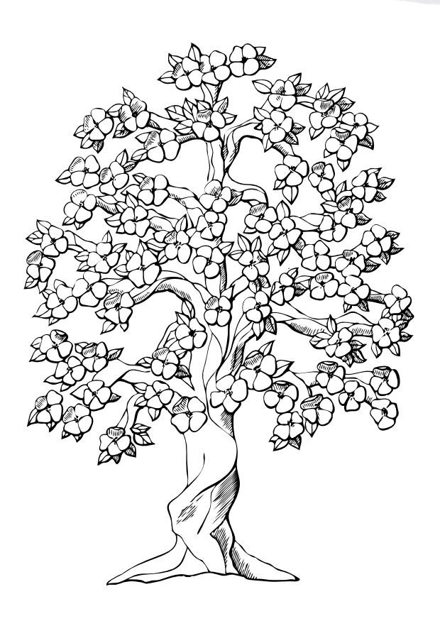 Malvorlage Baum mit Blüten Ausmalbild 9996
