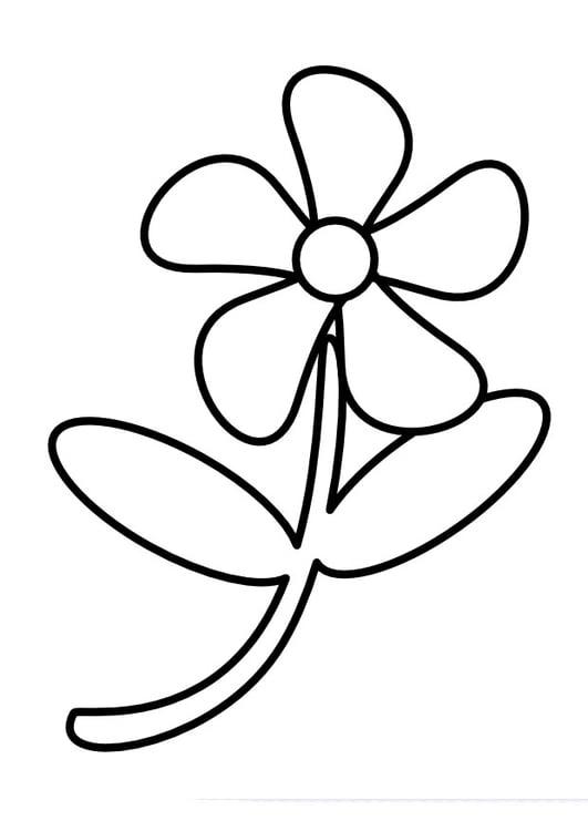 Blume Malvorlage