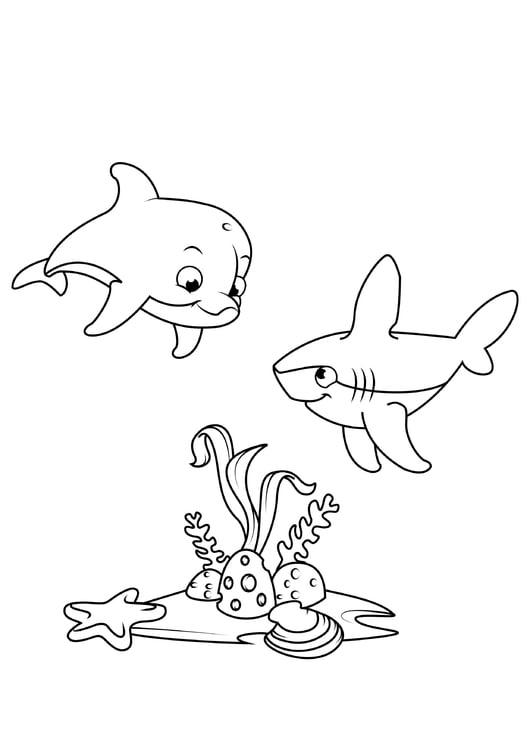 Malvorlage Delphin und Hai - Kostenlose Ausmalbilder Zum