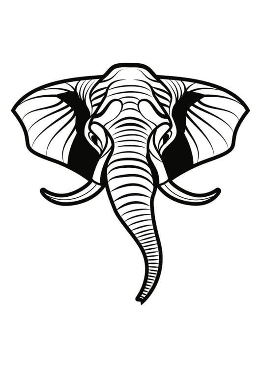 Malvorlage Elefant - Kostenlose Ausmalbilder Zum Ausdrucken