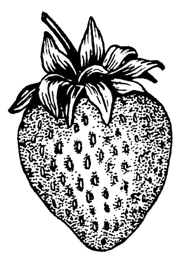Malvorlage Erdbeere - Kostenlose Ausmalbilder Zum Ausdrucken