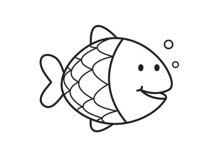 Malvorlage Fisch - Kostenlose Ausmalbilder Zum Ausdrucken