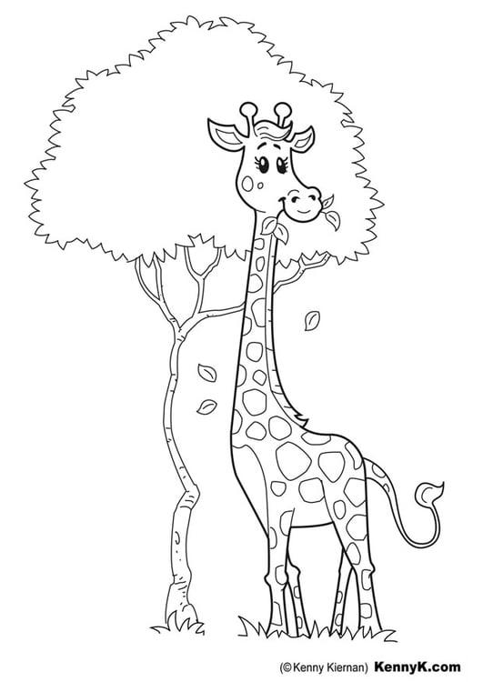 Malvorlage Giraffe - Kostenlose Ausmalbilder Zum