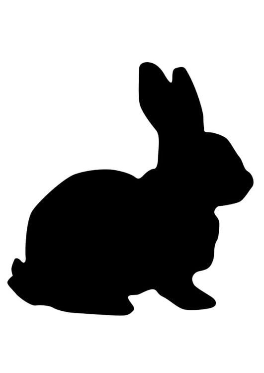 Malvorlage Hase - Kostenlose Ausmalbilder Zum Ausdrucken