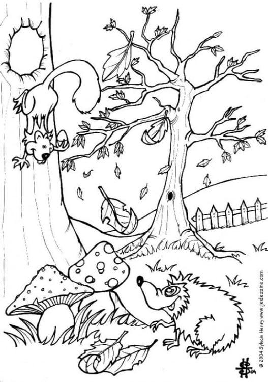 Malvorlage Herbstbaum