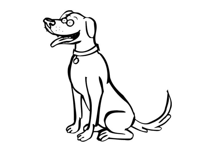 Malvorlage Hund - Kostenlose Ausmalbilder Zum Ausdrucken