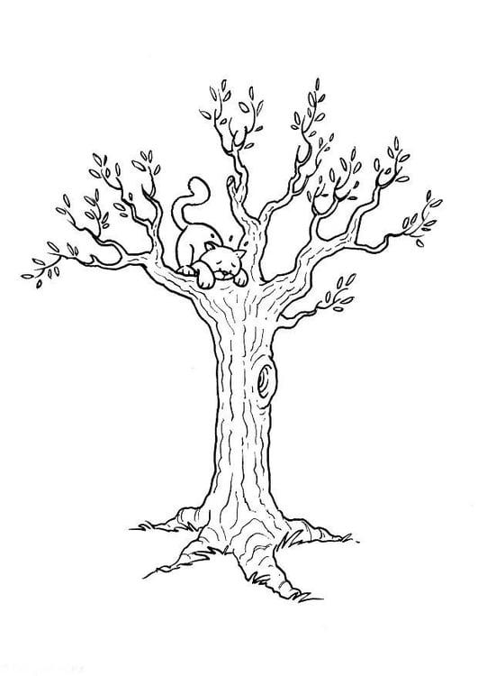 Malvorlage Katze im Baum - Kostenlose Ausmalbilder Zum