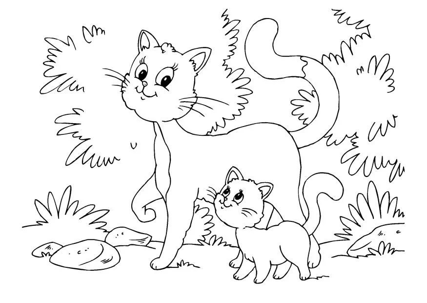 Malvorlage Kätzchen