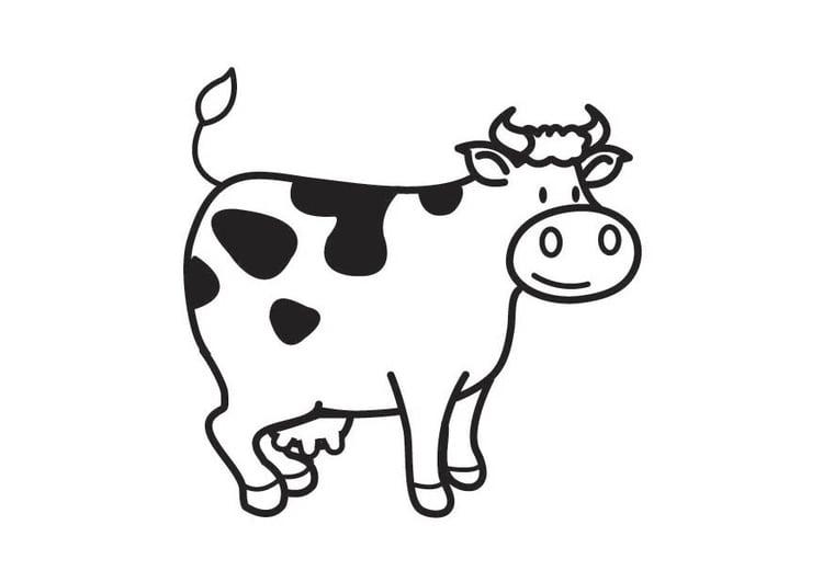 Malvorlage Kuh - Kostenlose Ausmalbilder Zum Ausdrucken
