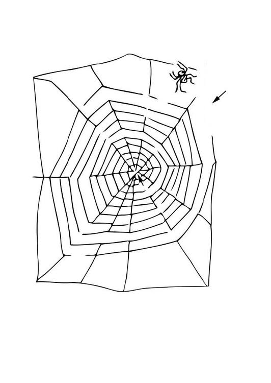 Malvorlage Labyrinth Spinne - Kostenlose Ausmalbilder Zum
