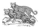 Malvorlage Leopard - Kostenlose Ausmalbilder Zum