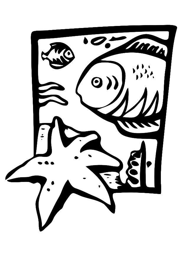 Malvorlagen Meerestiere Online