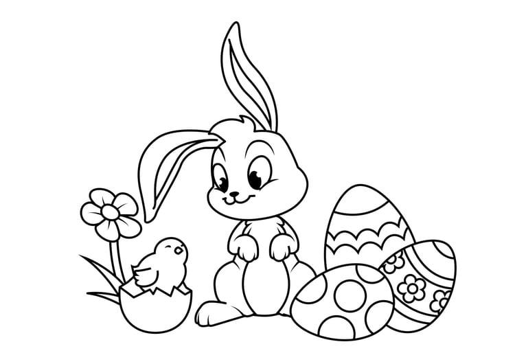 Malvorlage Osterhase Mit Eier Kinder Ausmalbilder