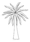 Malvorlage Palme - Kostenlose Ausmalbilder Zum Ausdrucken