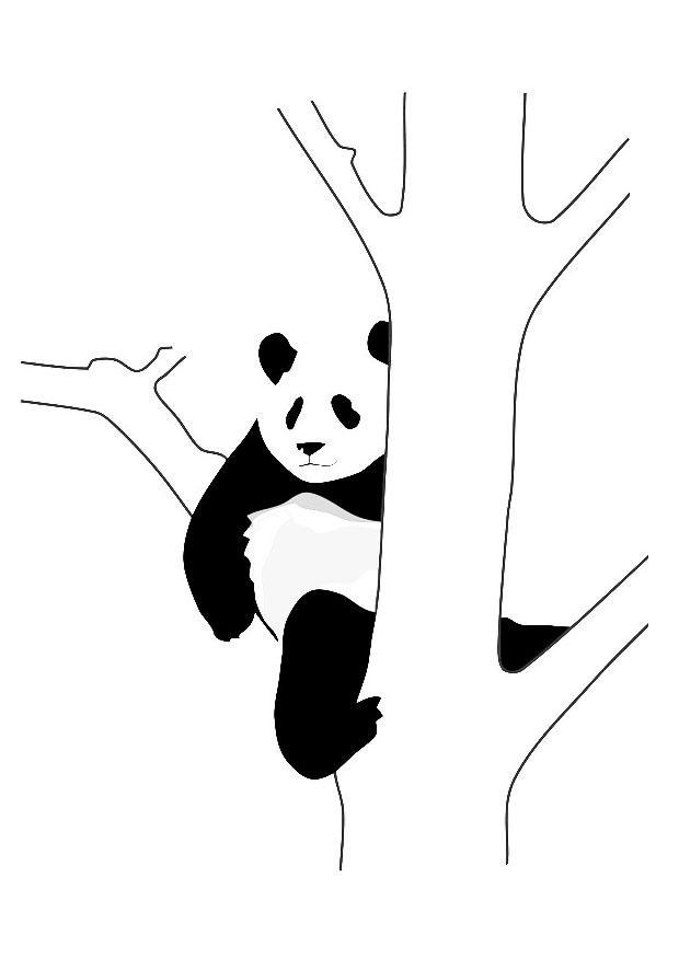 Malvorlage Pandabär im Baum Ausmalbild 19628