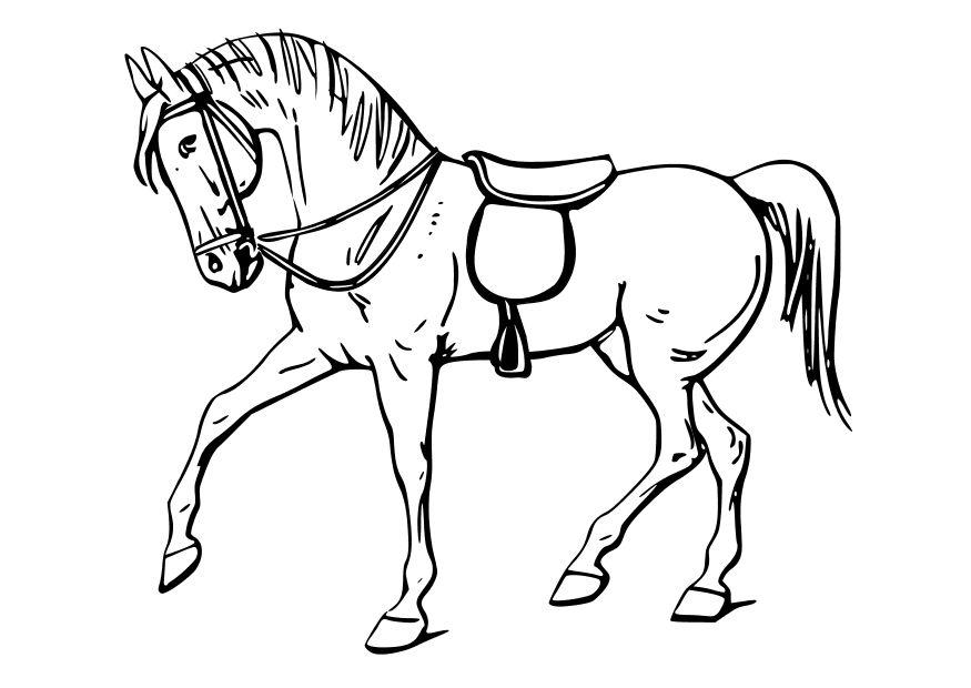 Malvorlage Pferd Ausmalbild 10347